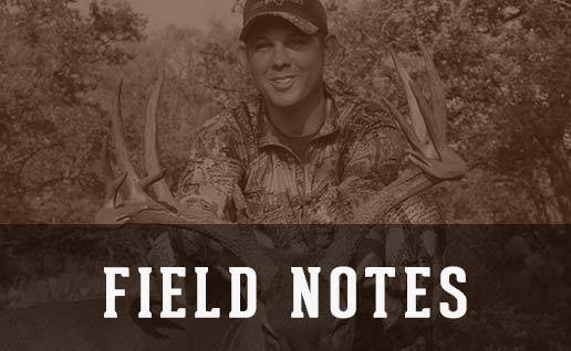 Whitetail Hunting Updates From Cross Oaks Ranch