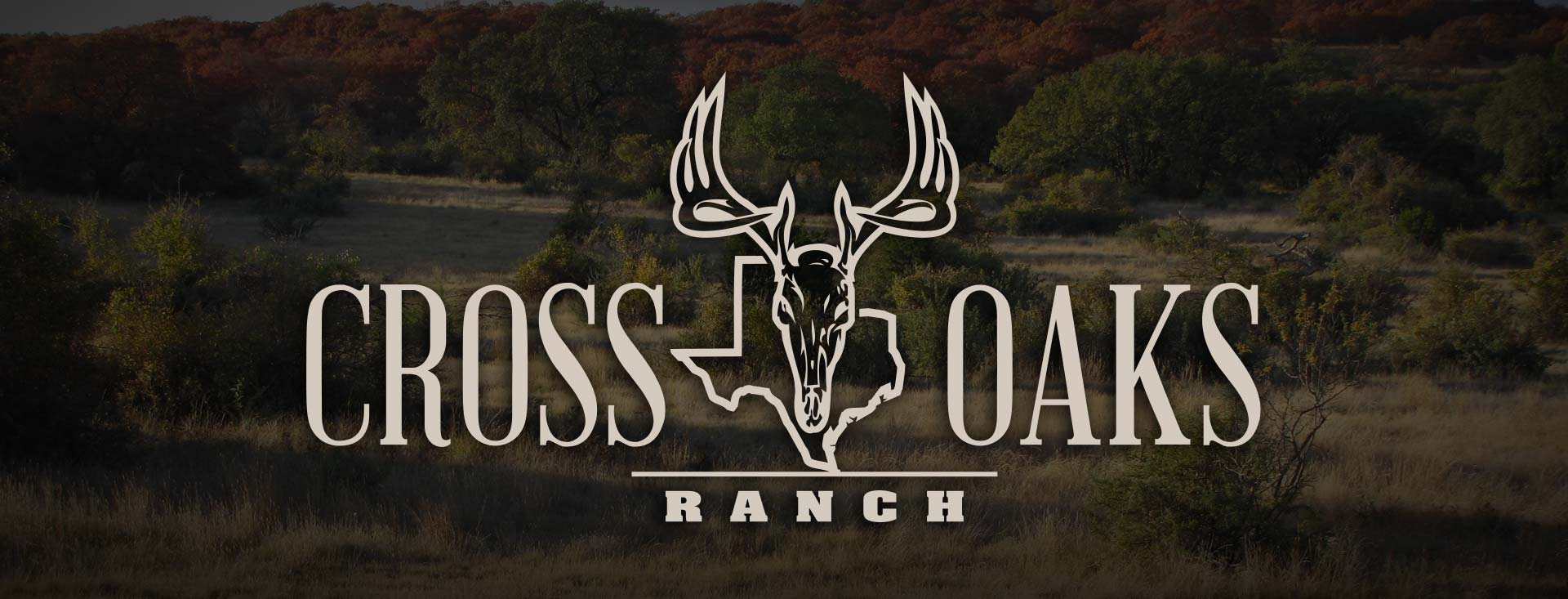 Link to Cross Oaks Ranch