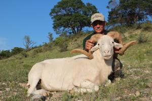 Trophy Texas Dall Ram Taken by Mark Lamensdorf of Oregon