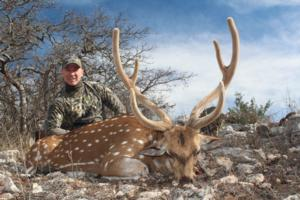 Mike Runyan's awesome Axis in Velvet. A great story behind this hunt.