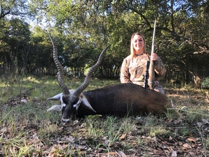 Lindsey Guillory made a great shot on this Blackbuck!